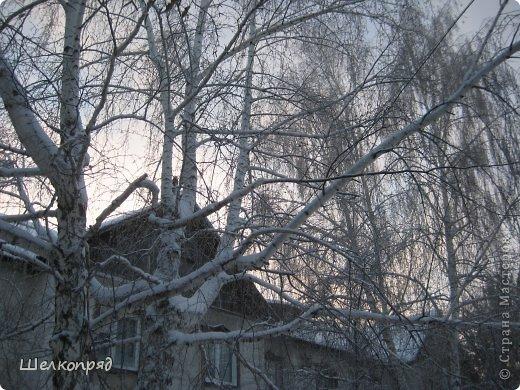 Зима была очень долгая, но очень красивая. фото 35