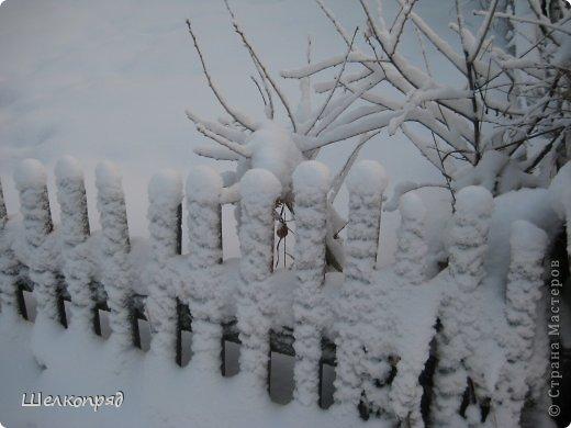 Зима была очень долгая, но очень красивая. фото 34
