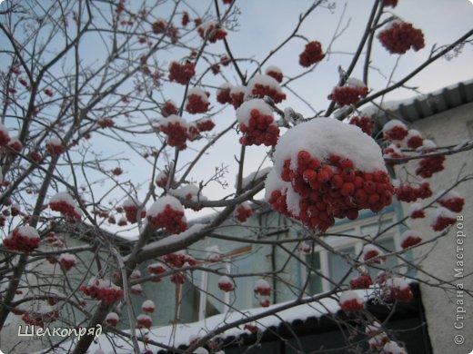 Зима была очень долгая, но очень красивая. фото 33