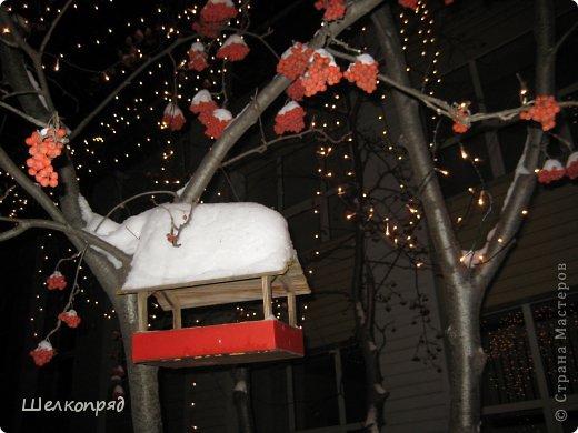 Зима была очень долгая, но очень красивая. фото 38