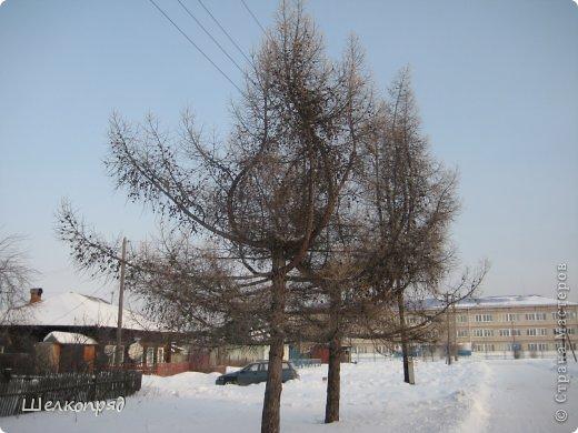 Зима была очень долгая, но очень красивая. фото 39