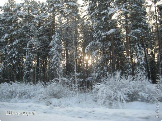 Зима была очень долгая, но очень красивая. фото 58