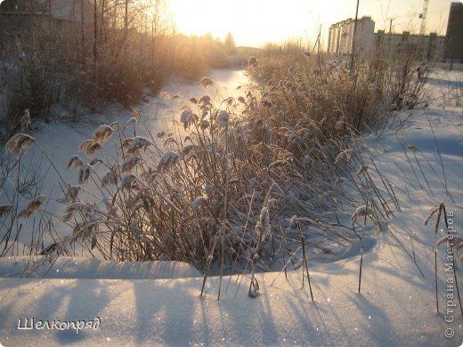 Зима была очень долгая, но очень красивая. фото 11