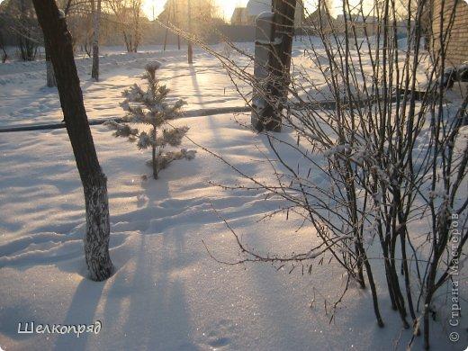 Зима была очень долгая, но очень красивая. фото 12