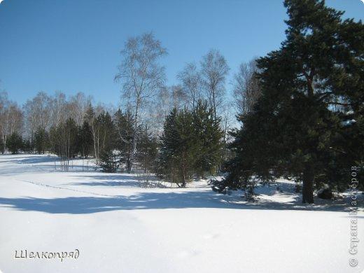 Зима была очень долгая, но очень красивая. фото 18