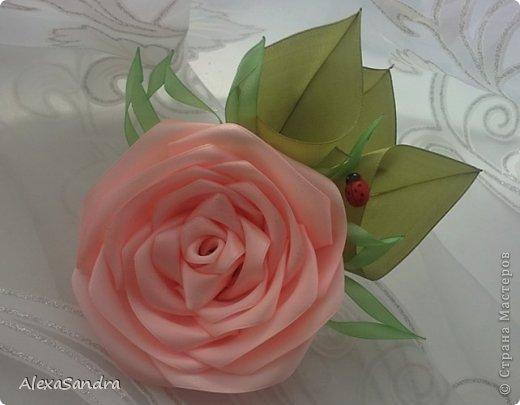 Выставляю свои цветочки - все повторяла по МК Страны, спасибо!. Первые - одуванчики, когда увидела МК в одноклассниках, загорелась повторить! фото 2