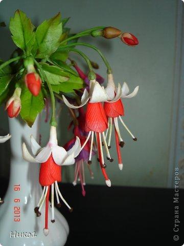 Дорогие мастерицы СМ! Захотелось сделать этот красивый цветок, который растет у меня на подоконнике, но никак не хочет цвести... Очень мне нравится фуксия - она как балеринка в пышной юбочке  на длинной ножке! Посмотрела в Интернете фото фуксий, оказалось, что их разновидностей великое множество...  фото 7