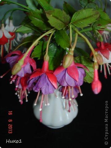 Дорогие мастерицы СМ! Захотелось сделать этот красивый цветок, который растет у меня на подоконнике, но никак не хочет цвести... Очень мне нравится фуксия - она как балеринка в пышной юбочке  на длинной ножке! Посмотрела в Интернете фото фуксий, оказалось, что их разновидностей великое множество...  фото 3