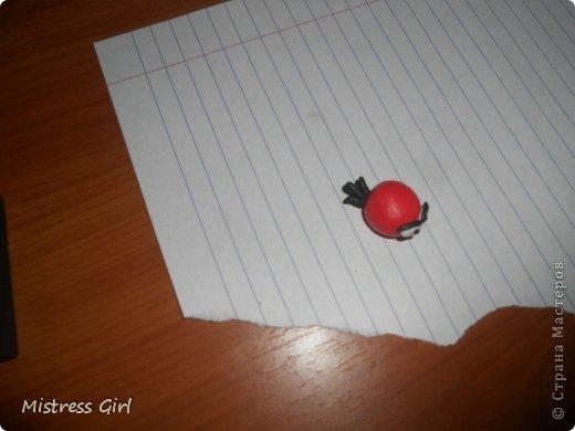 Здравствуйте!Мой мастер класс для любителей игры Angry Birds.2 птички и одна хрюшка.Начнём? фото 9