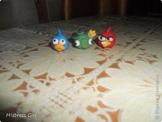 Здравствуйте!Мой мастер класс для любителей игры Angry Birds.2 птички и одна хрюшка.Начнём? фото 1