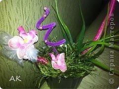 Делала специально для свекрови, под ее новые обои с орхидеями. Вот только проволоку у меня получилась не круглая, а квадратная в диаметре (если можно так сказать).  фото 3