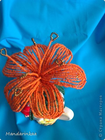 Оранжевая лилия фото 2