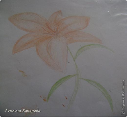 первые 10 фото - рисунки роз,далее 9 рисунков разных цветочков,11 рисунков животных и 13 разных рисунков. Качество может быть плохое из-за уменьшения размера фото. фото 13