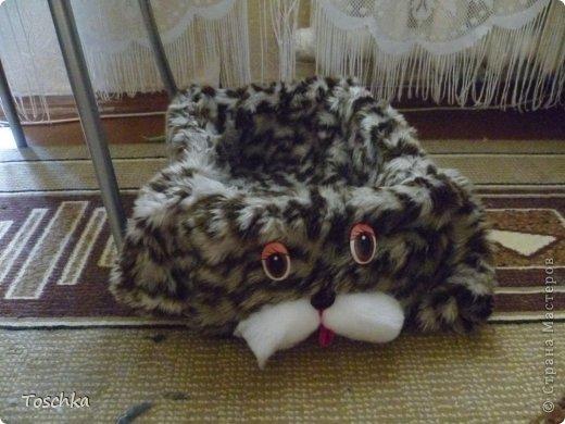Вот такое спальное место получилось для моего домашнего тигра. Это только сделала. фото 1