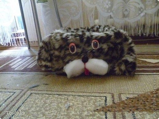 Вот такое спальное место получилось для моего домашнего тигра. Это только сделала. фото 2