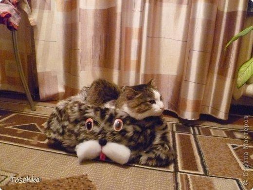 Вот такое спальное место получилось для моего домашнего тигра. Это только сделала. фото 3