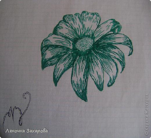 первые 10 фото - рисунки роз,далее 9 рисунков разных цветочков,11 рисунков животных и 13 разных рисунков. Качество может быть плохое из-за уменьшения размера фото. фото 12