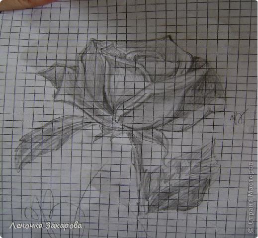 первые 10 фото - рисунки роз,далее 9 рисунков разных цветочков,11 рисунков животных и 13 разных рисунков. Качество может быть плохое из-за уменьшения размера фото. фото 9