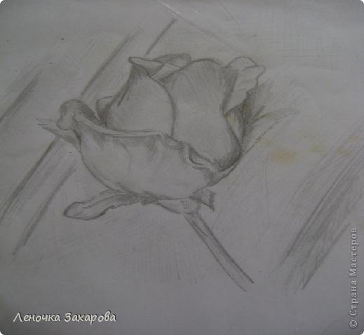 первые 10 фото - рисунки роз,далее 9 рисунков разных цветочков,11 рисунков животных и 13 разных рисунков. Качество может быть плохое из-за уменьшения размера фото. фото 8