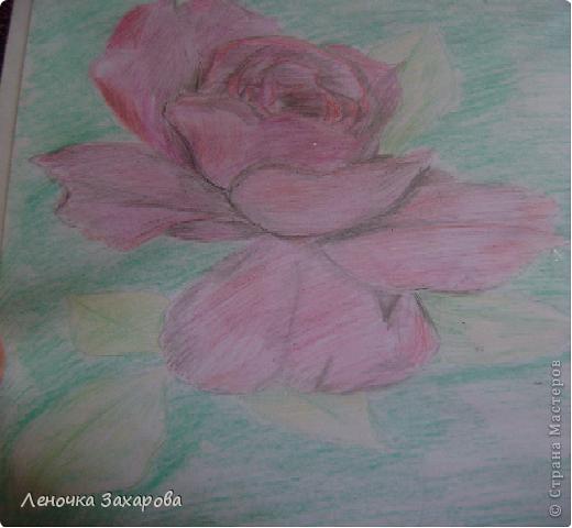 первые 10 фото - рисунки роз,далее 9 рисунков разных цветочков,11 рисунков животных и 13 разных рисунков. Качество может быть плохое из-за уменьшения размера фото. фото 4