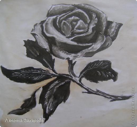 первые 10 фото - рисунки роз,далее 9 рисунков разных цветочков,11 рисунков животных и 13 разных рисунков. Качество может быть плохое из-за уменьшения размера фото. фото 7