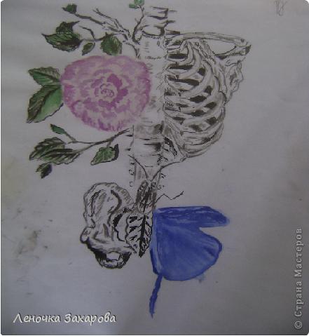 первые 10 фото - рисунки роз,далее 9 рисунков разных цветочков,11 рисунков животных и 13 разных рисунков. Качество может быть плохое из-за уменьшения размера фото. фото 31