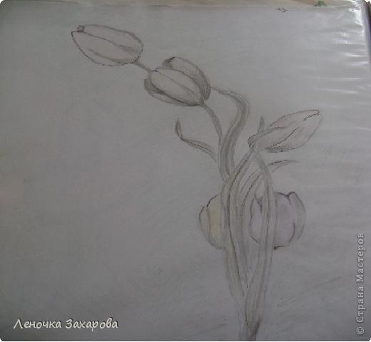первые 10 фото - рисунки роз,далее 9 рисунков разных цветочков,11 рисунков животных и 13 разных рисунков. Качество может быть плохое из-за уменьшения размера фото. фото 11