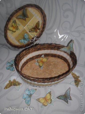 Бабочки летают,  бабочки... фото 4