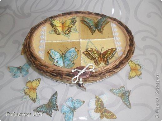 Бабочки летают,  бабочки... фото 3