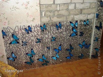 1_13 Бабочки в банке. Бабочки своими руками
