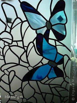 3_5 Бабочки в банке. Бабочки своими руками