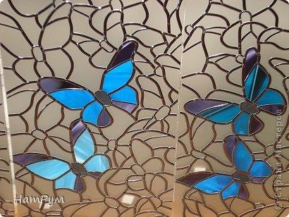 6_2 Бабочки в банке. Бабочки своими руками