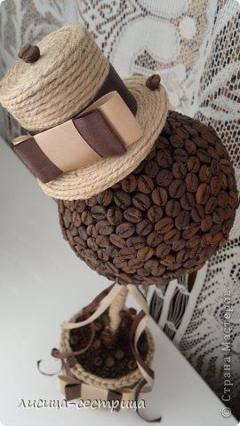 Ну вот и я решилась сделать кофейное деревце) судите) фото 3