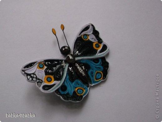 Бабочек очень люблю. Начинала с одной, дооформить работу, ну и затянуло... фото 3