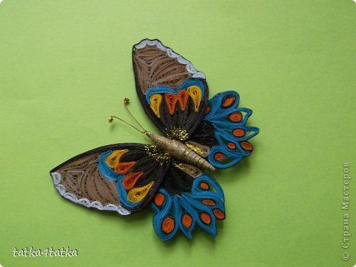 Бабочек очень люблю. Начинала с одной, дооформить работу, ну и затянуло... фото 4