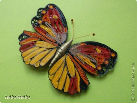 Бабочек очень люблю. Начинала с одной, дооформить работу, ну и затянуло... фото 5