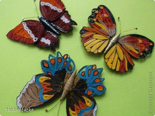 Бабочек очень люблю. Начинала с одной, дооформить работу, ну и затянуло... фото 1