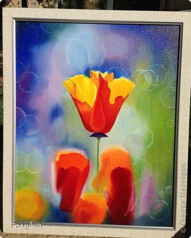 15 июня, я была опять на встрече с прекрасным:)! На мастер-классе по живописи от Ольги Базановой и рисовала эшшольцию. Хотя, когда я ее рисовала, я думала, что это мак... Галина К, меня поправила, я не сильно сопротивлялась, т.к. прочитала в википедии, что она, эта самая эшшольция, из семейства маковых:))) Итак картина маслом, холст 40Х50см. Фотография №1 и №3 сделаны Валентиной Суховой. фото 7