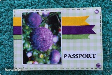 Доброе время суток мастерицы СМ! Вот продолжаю свою коллекцию обложек на паспорт (может где то и будут повторюшки...))) фото 7