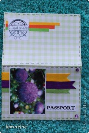 Доброе время суток мастерицы СМ! Вот продолжаю свою коллекцию обложек на паспорт (может где то и будут повторюшки...))) фото 8