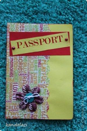 Доброе время суток мастерицы СМ! Вот продолжаю свою коллекцию обложек на паспорт (может где то и будут повторюшки...))) фото 11