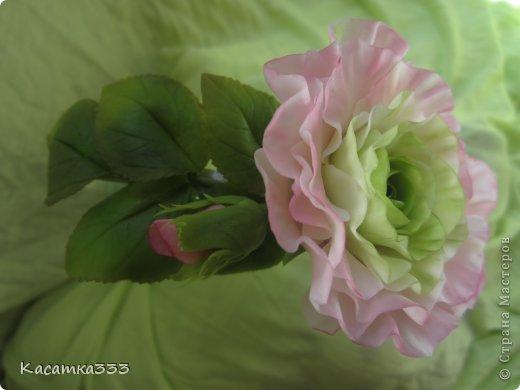 Ободок с цветами. фото 1