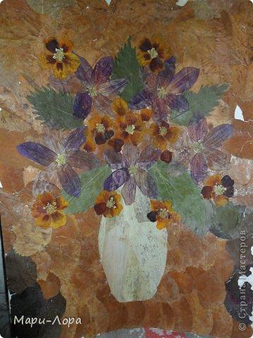Решила попробовать нарисовать картину с помощью засушенных листьев цветов и деревьев!Вот что у меня получилось...извините за качество картины,некоторые ее участки осыпались,т.к. она была сделана 5 лет назад.