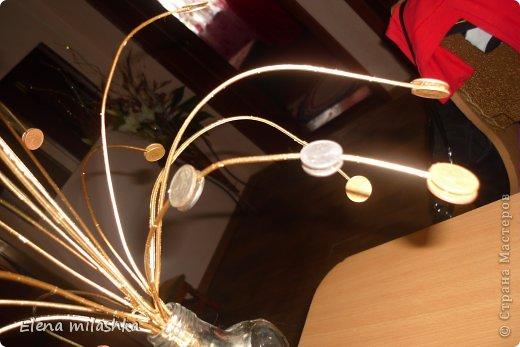 Здравствуйте! Теперь и у меня есть денежная бутылочка. Здесь в Стране столько показоно и рассказано про бутылочки и баночки, что меня это тоже не обошло стороной! Хотела изобразить брызги )) Денежное дерево!!! Украшает нашу кассу!!!)) фото 8