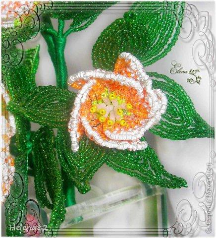 Морозники выполнены по книге Елены Башкатовой.В работе использованы бисер,проволока,нить Ирис. фото 5