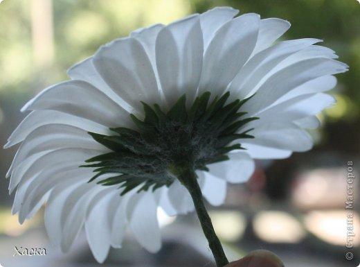 Белая гербера на браслет для свидетельницы фото 3