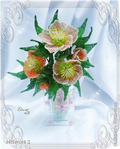 Морозники выполнены по книге Елены Башкатовой.В работе использованы бисер,проволока,нить Ирис.  Поделка, изделие.
