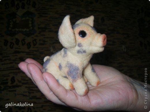 С большим удовольствием сваляла вот такого поросёнка.До него были кошки,куклы,зайка,а теперь у меня есть эта маленькая весёлая животинка.Валяла глядя на фото из инета. фото 1