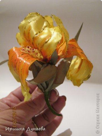 ирисы и лили фото 3