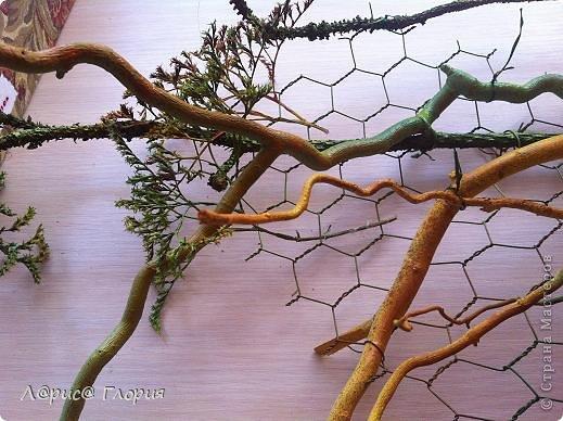 Мастер-класс Флористика Ассамбляж Цветок из плода ириса петушка Материал природный фото 9